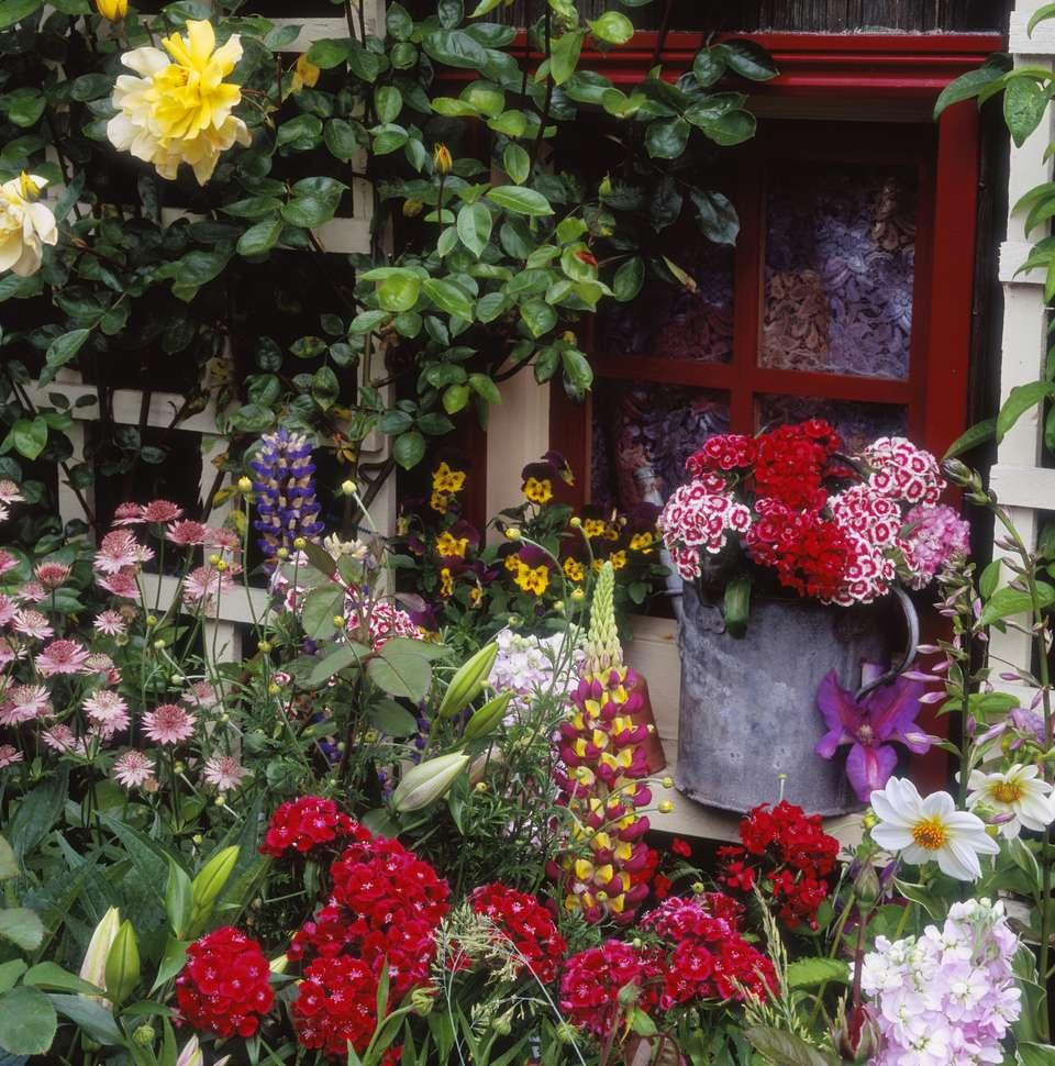 Healthy Flower Garden