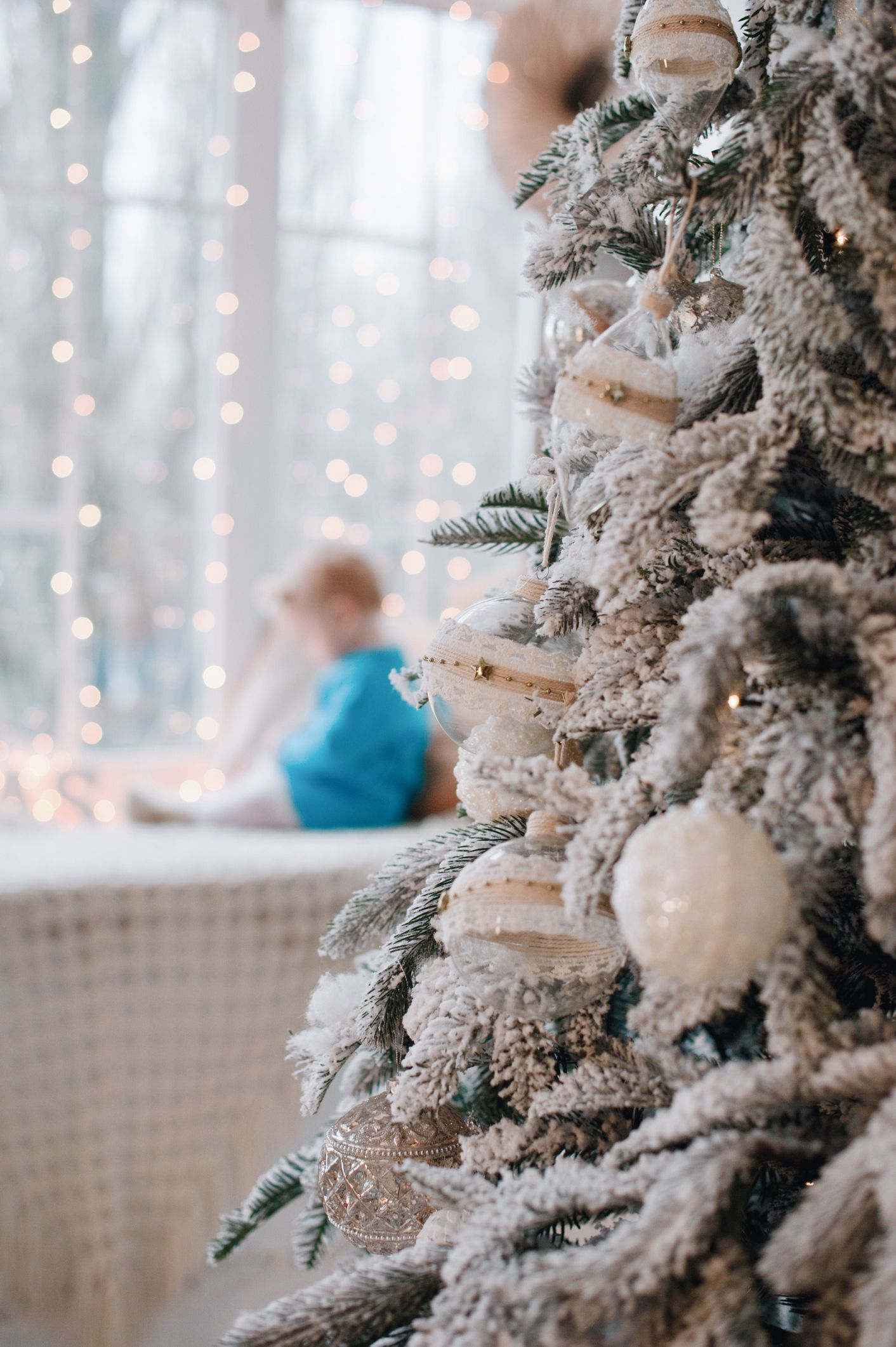 The 7 Best Places to Buy a Christmas Tree in 2021
