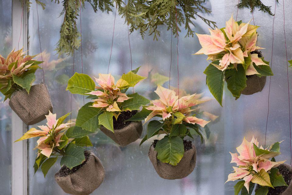 Burlap Flower Pots