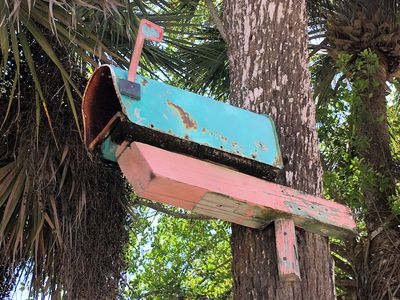 Turn An Old Mailbox Into A Birdhouse