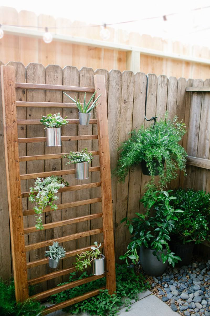 DIY Outdoor Succulent Wall