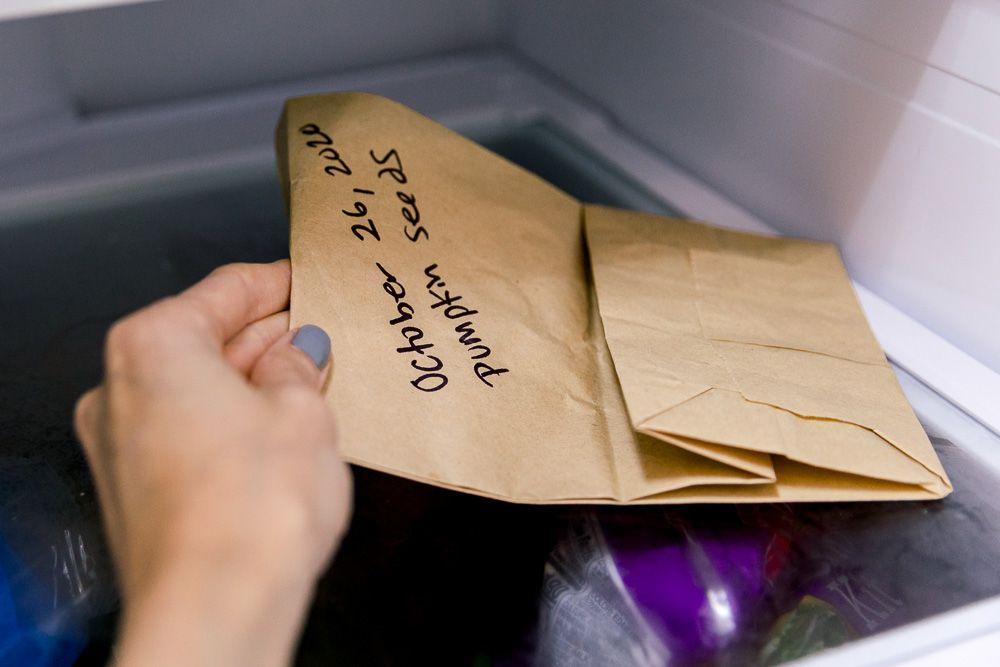 storing pumpkin seeds in the fridge
