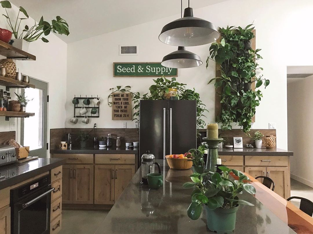 kitchen with living plant wall