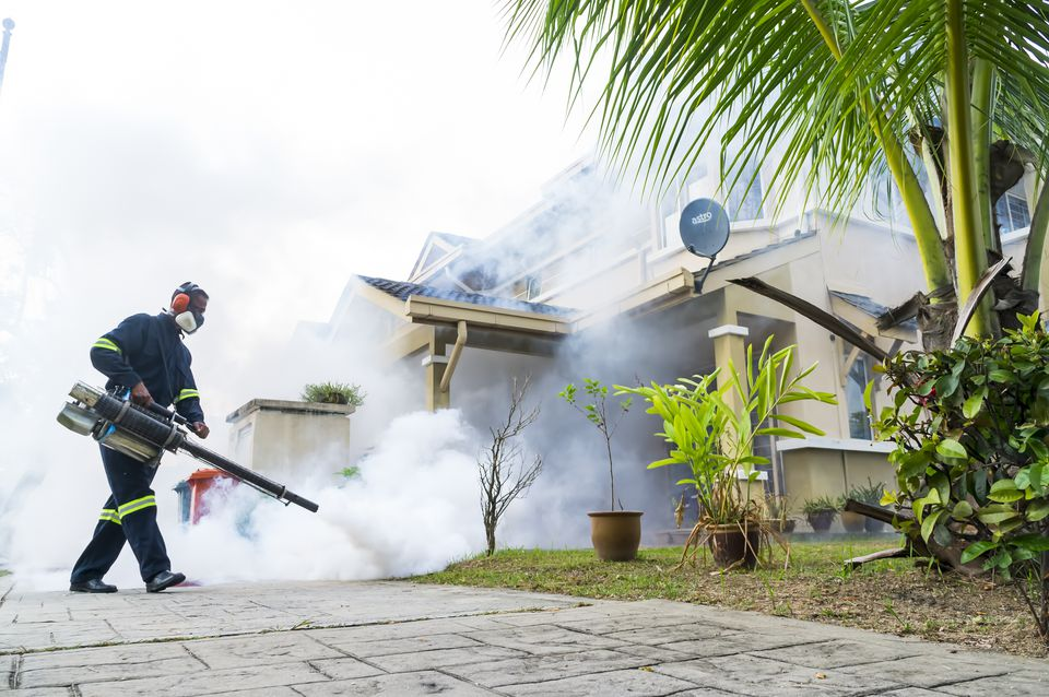 Fogging to eliminate aedes mosquito