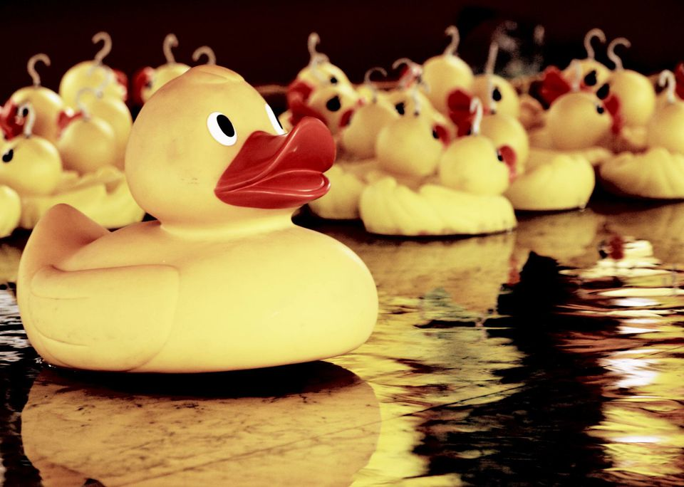 A picture of the duck pull game