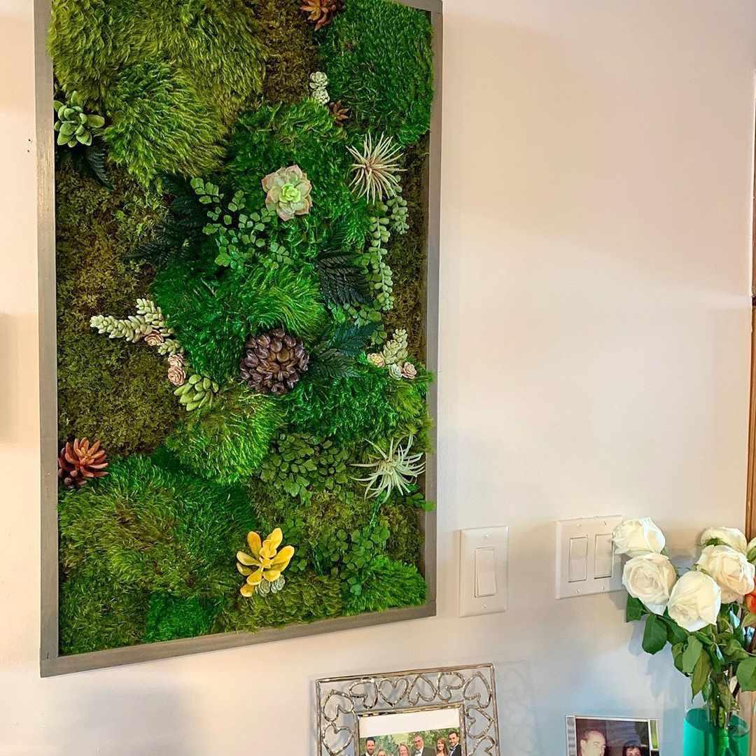 Wall mounted living wall