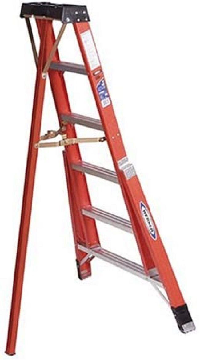 FTP 6-Foot Ladder