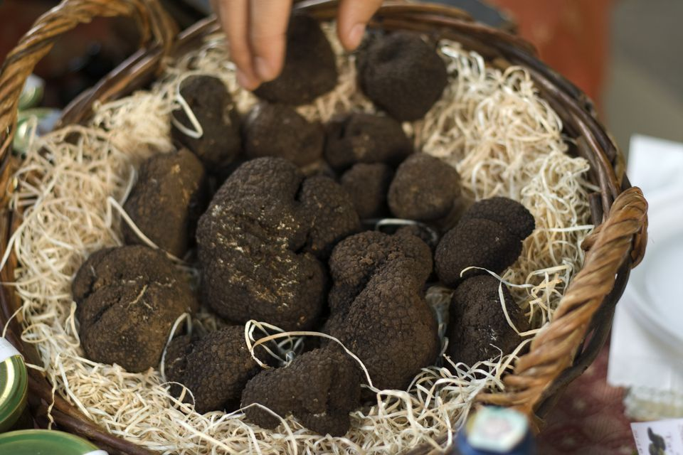 Black Truffles in a Basket