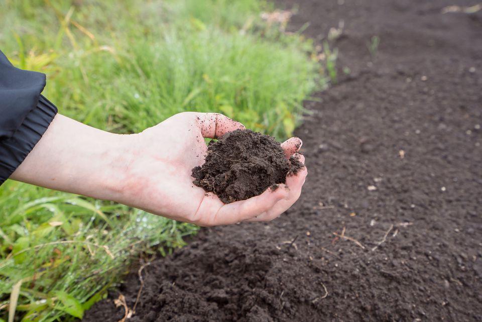 Woman grabbing soil