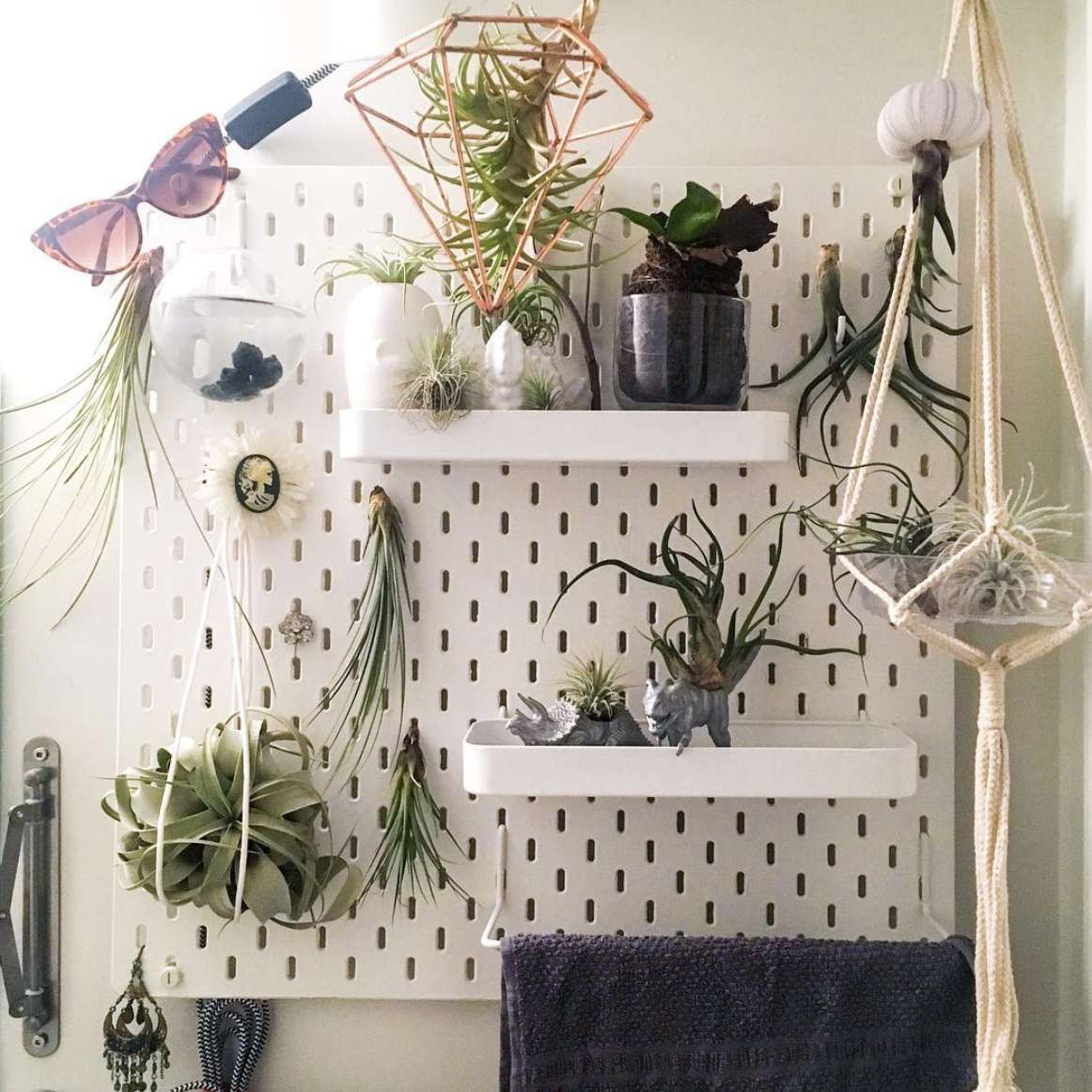 pegboard with plants attached to it