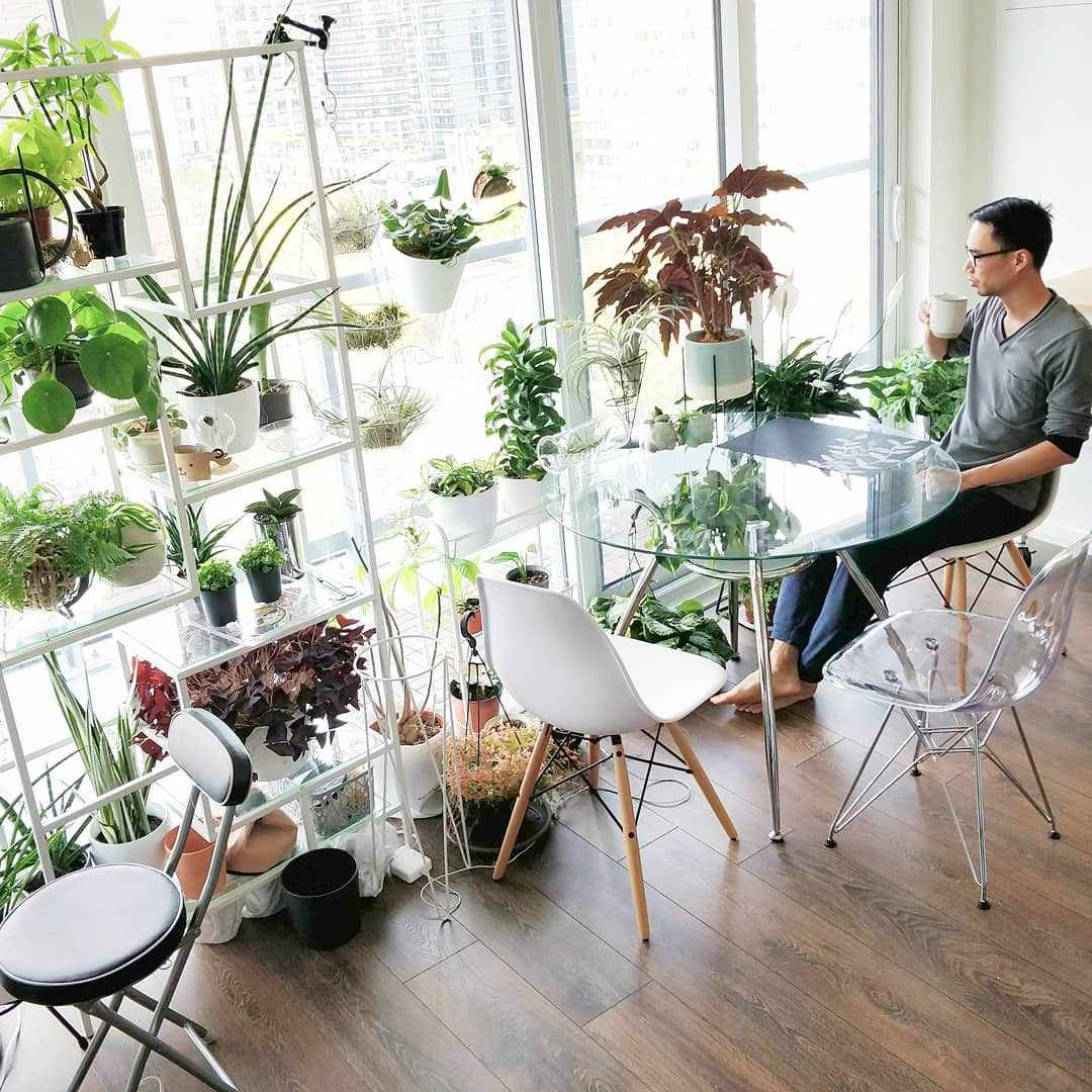 Man sitting at table surrounded by plants