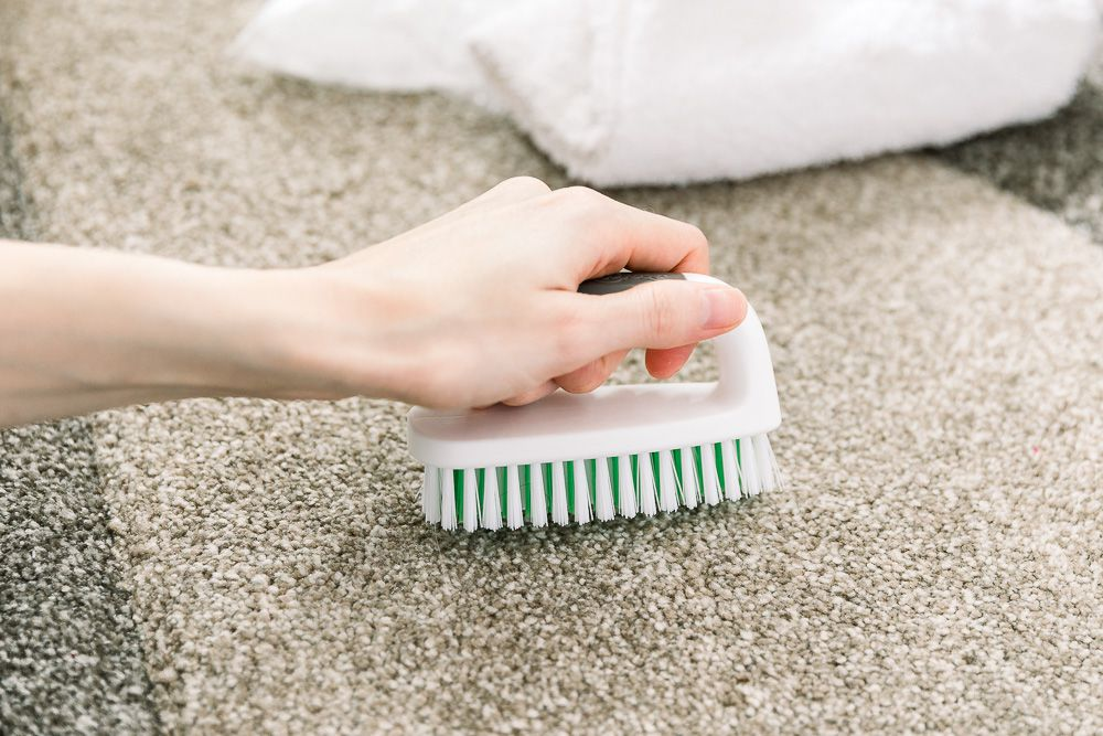 person scrubbing carpet