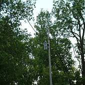 Utility Company Power Pole