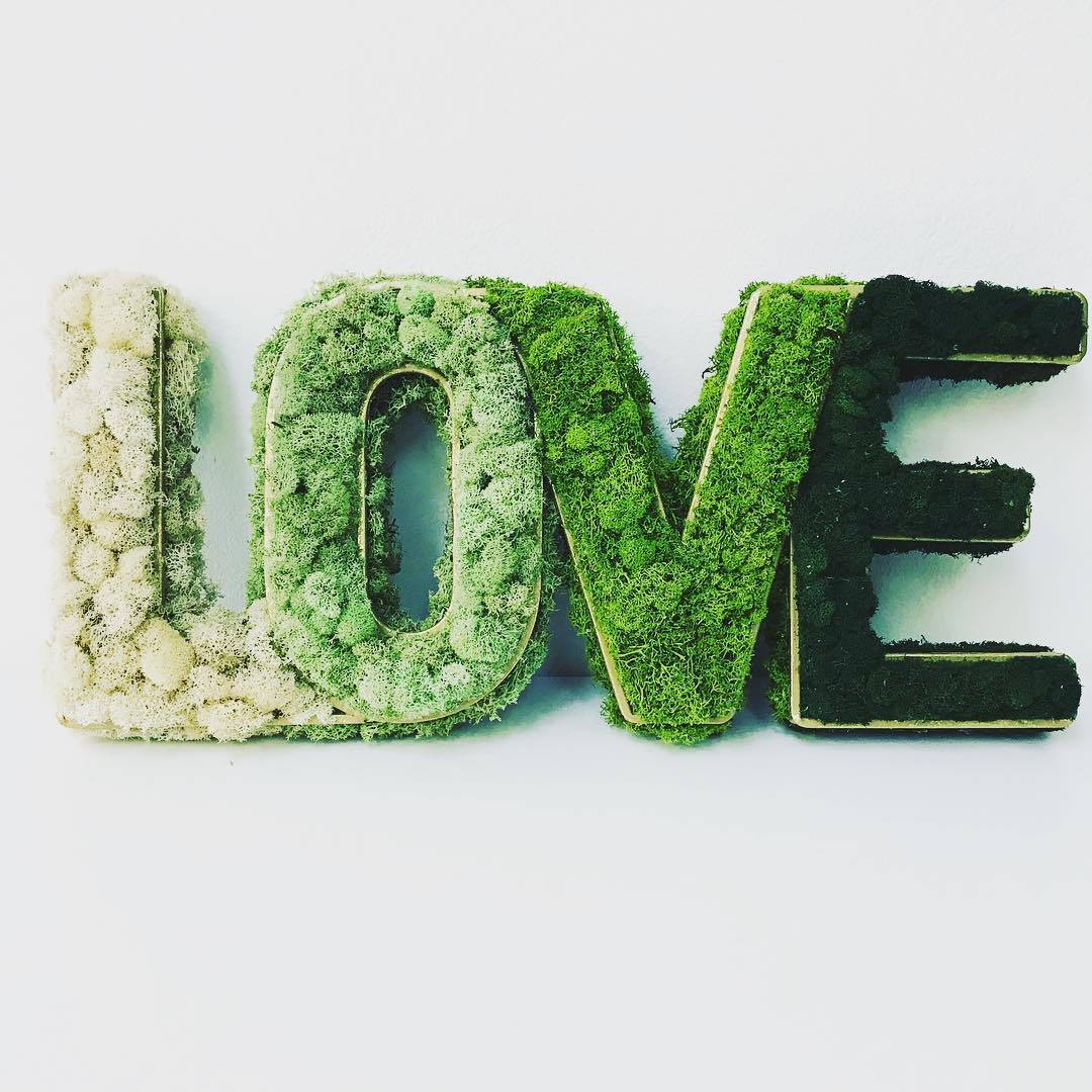 Moss as Cute Wall Sign
