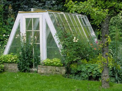 Large greenhouse in a garden.
