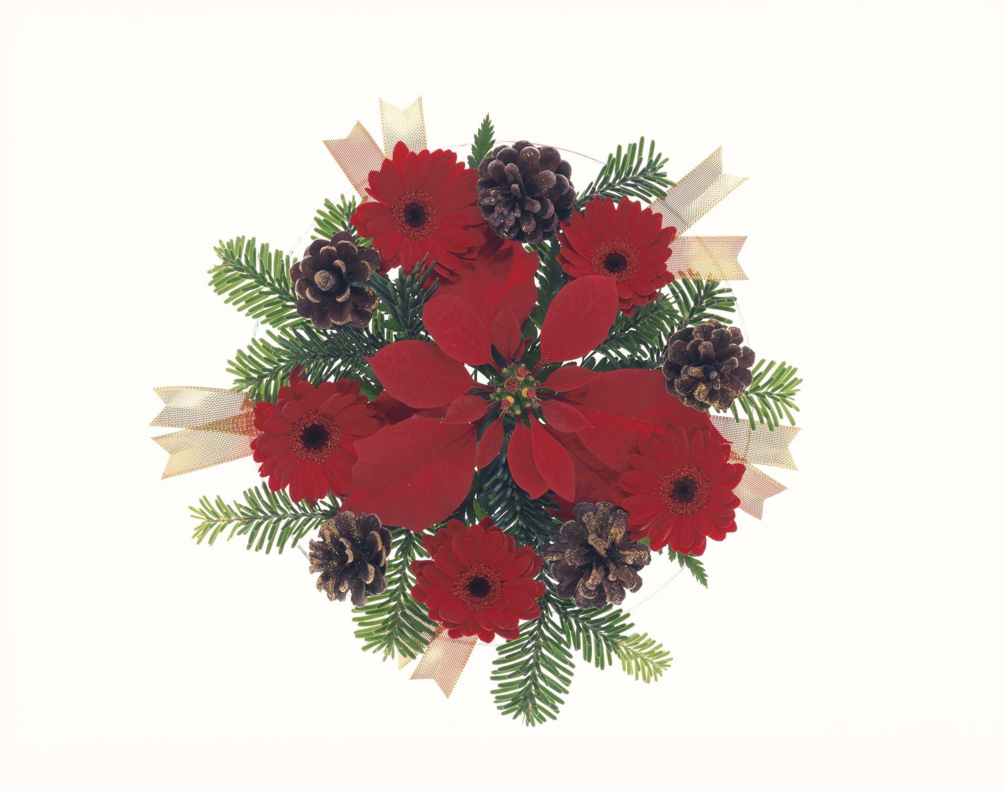 Winter flowers for weddings izmirmasajfo