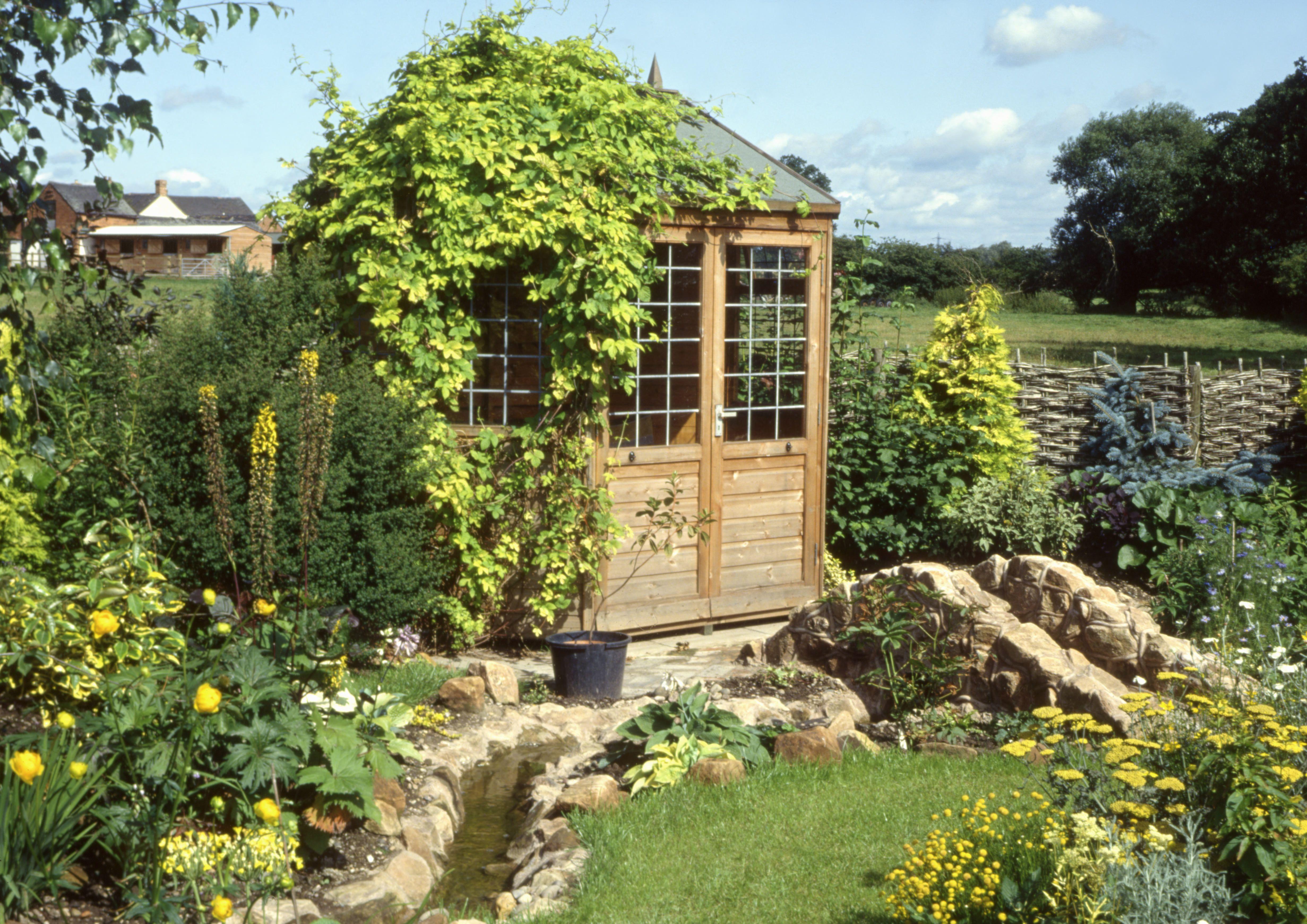 Yellow Cottage Garden