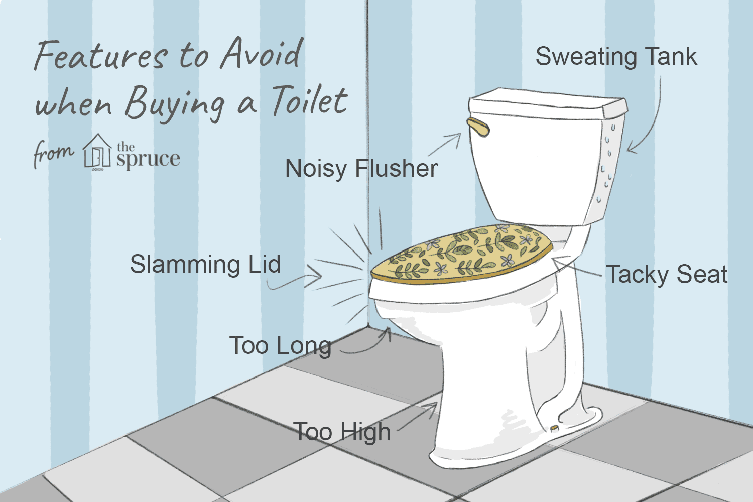 buying a toilet
