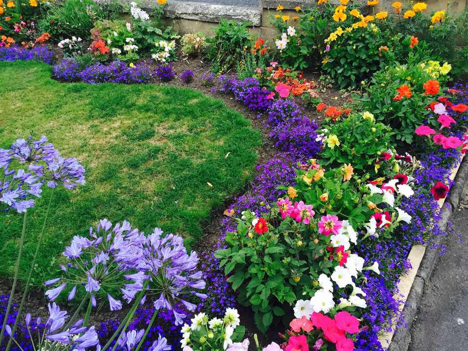 Do it yourself landscaping tips high angle view of multi colored flower bed in back yard solutioingenieria Gallery