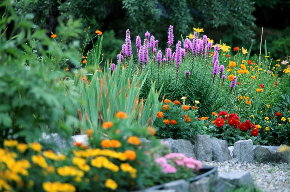 Choosing Plants for a Small Garden Space on Backyard Rocks  id=36937