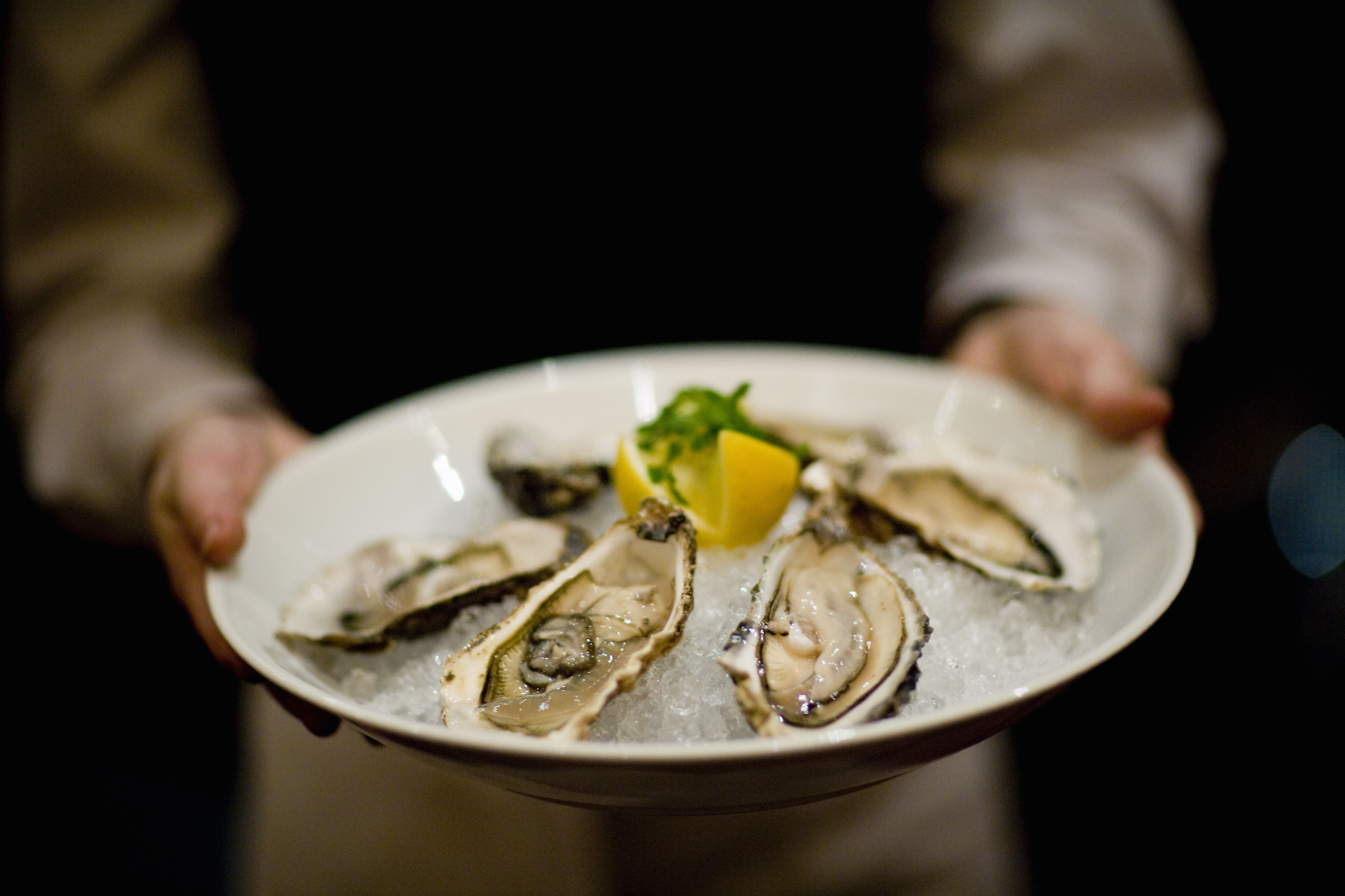 Waiter holding oysters
