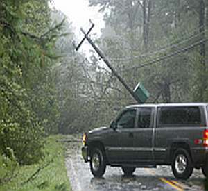 A photo of downed power lines.