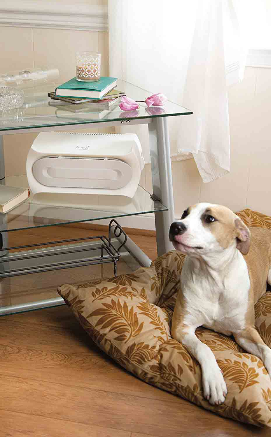 Air purifier on a small table with a dog lying on a bed next to it