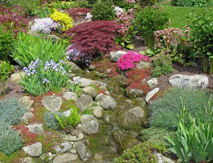 Guide to Xeriscape Landscaping on xeriscape landscaping ideas, water backyard ideas, small backyard ideas, gardening backyard ideas, concrete backyard ideas, masonry backyard ideas, desert backyard ideas, pavers backyard ideas, waterfalls backyard ideas, low water front yard landscape design ideas, texas backyard landscape ideas, grass backyard ideas, landscaping backyard ideas, hardscape backyard ideas, flagstone backyard ideas, fruit trees backyard ideas, cactus backyard ideas, stone backyard ideas, mulch backyard ideas, groundcover backyard ideas,