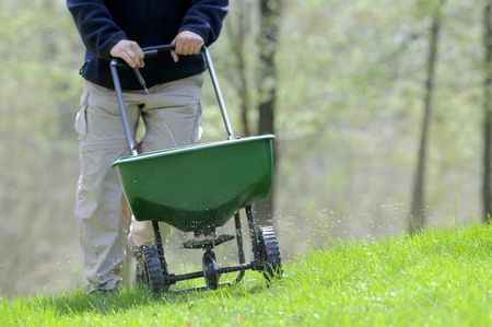 Fertilizing The Lawn In Spring