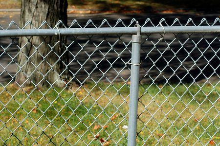 My Picture Shows Why Homeowners Often Wish To Disguise Chain Link Fencing
