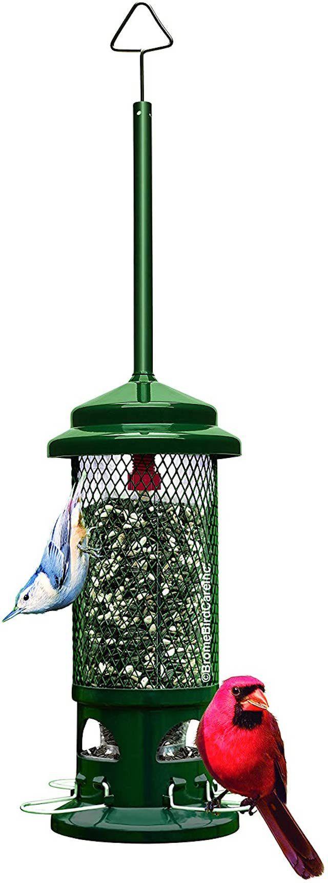 Brome Squirrel Buster Standard Squirrel-proof Bird Feeder w/4 Metal Perches