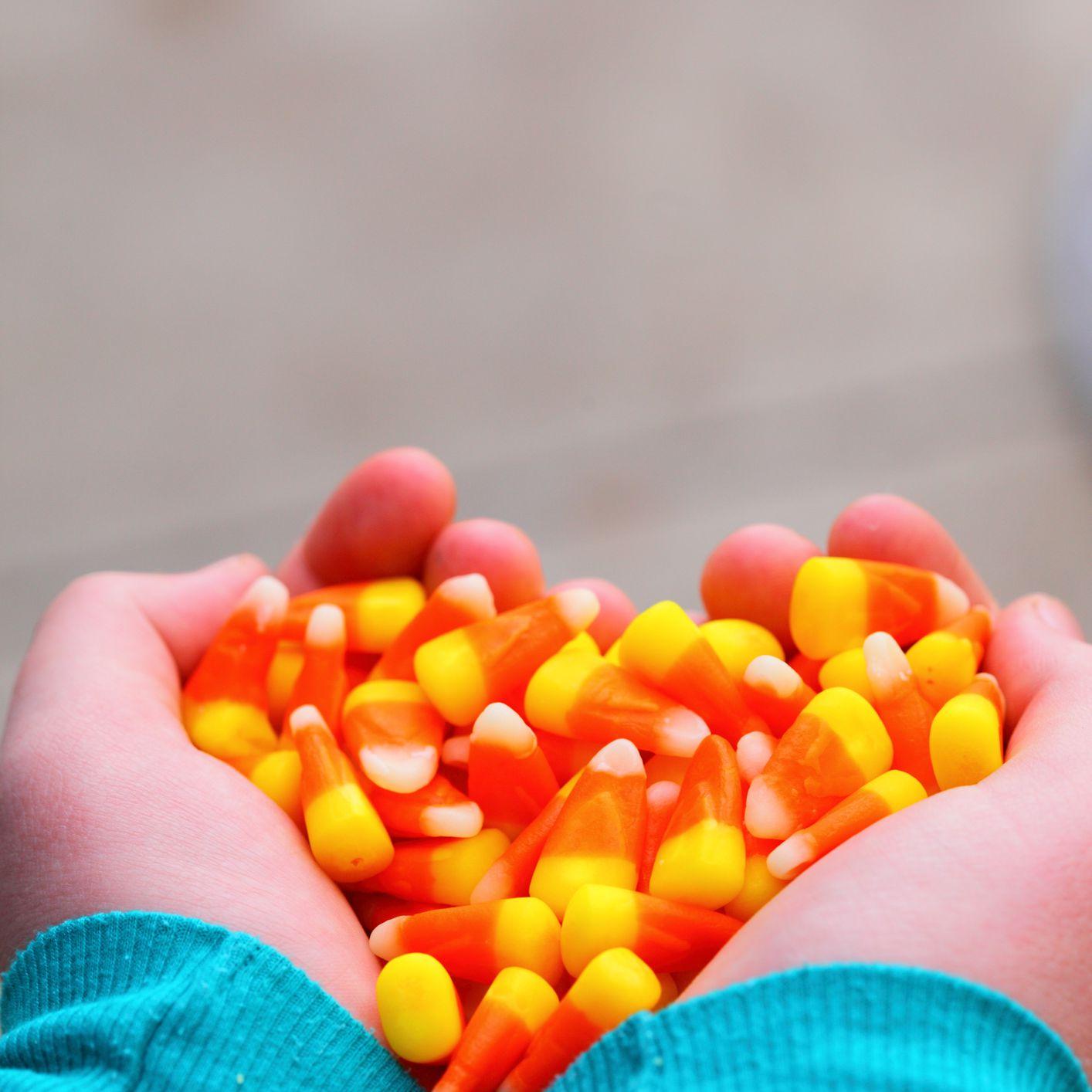 Sosteniendo maíz dulce