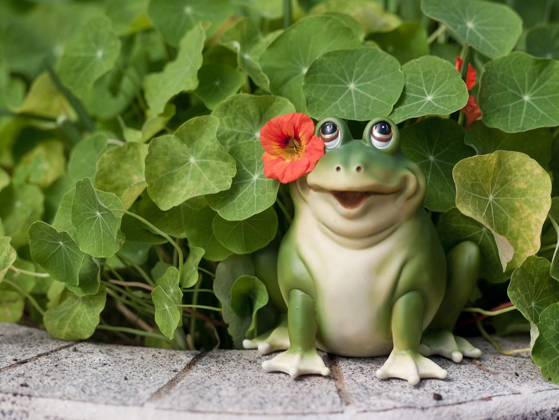 A Toad Figurine