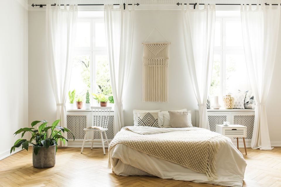 Plant and white chair next to bed with blanket in bright bedroom interior with windows. Real photo