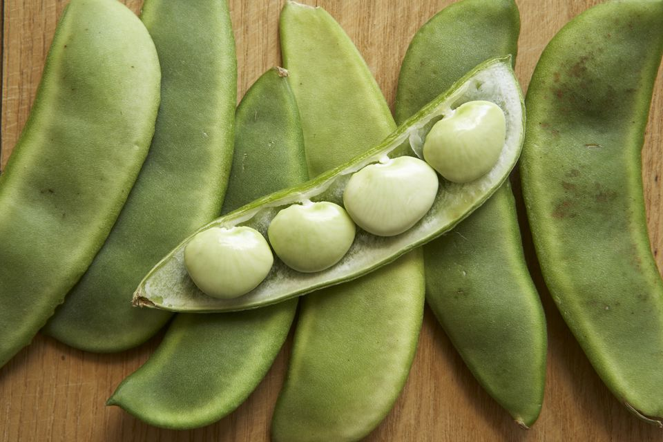 A close-up of Lima beans