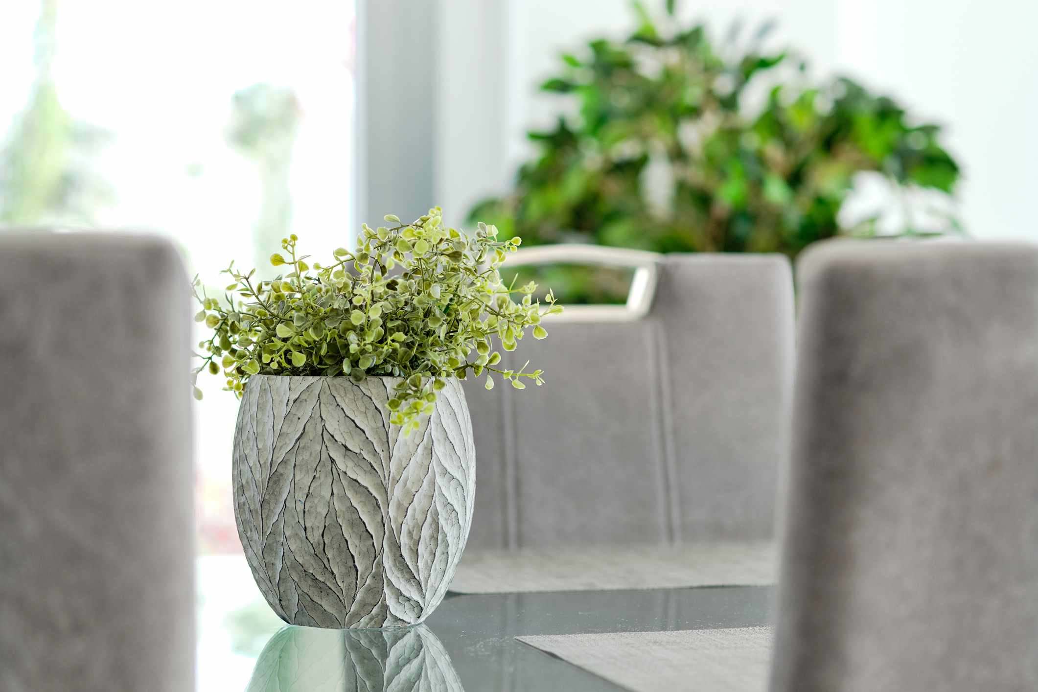 Close-up of potted plant on glass table in living room