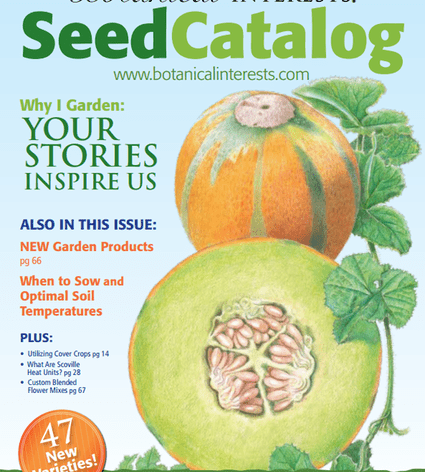 A Guide To Plants And Seed Garden Catalogs