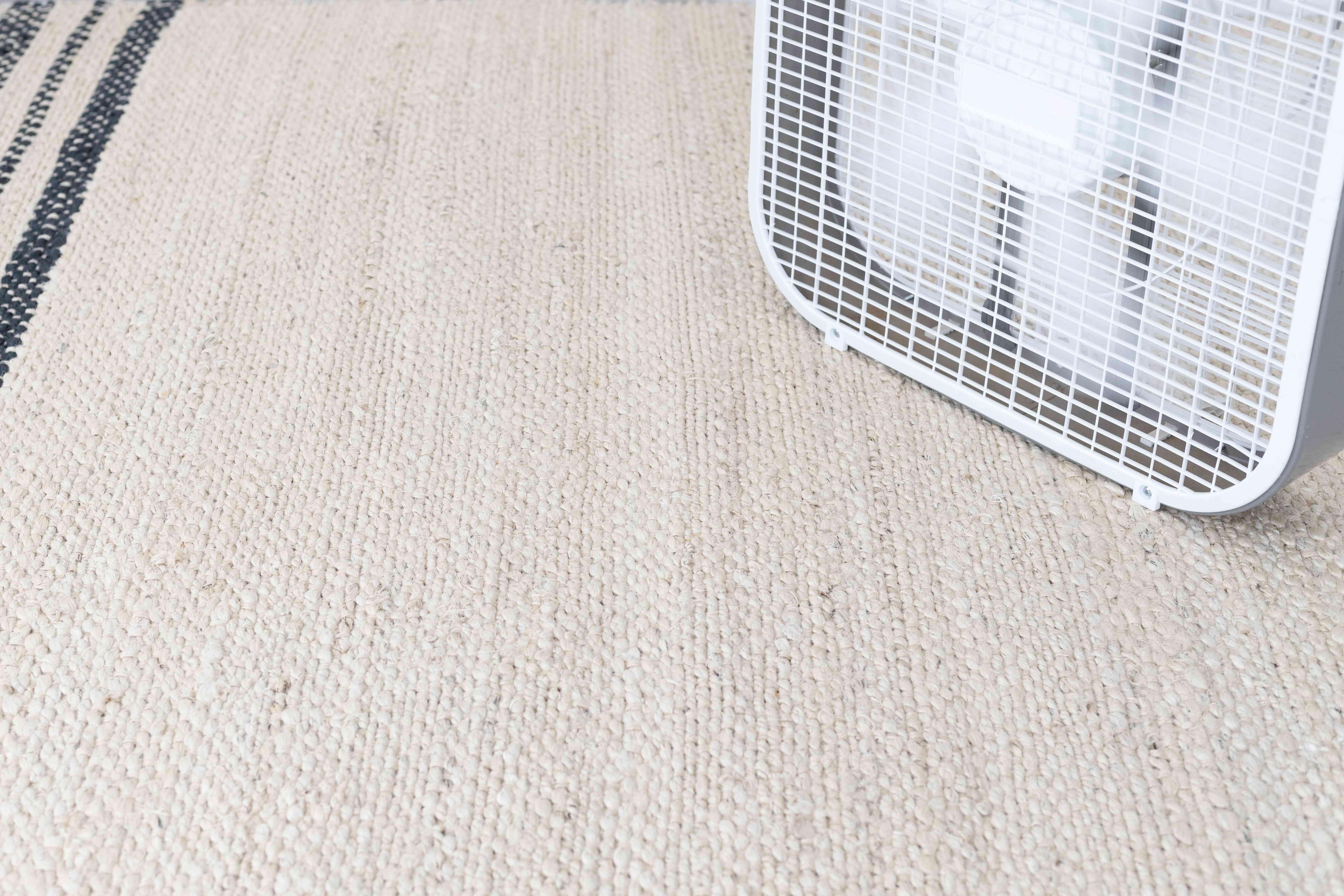 Fan air drying carpet