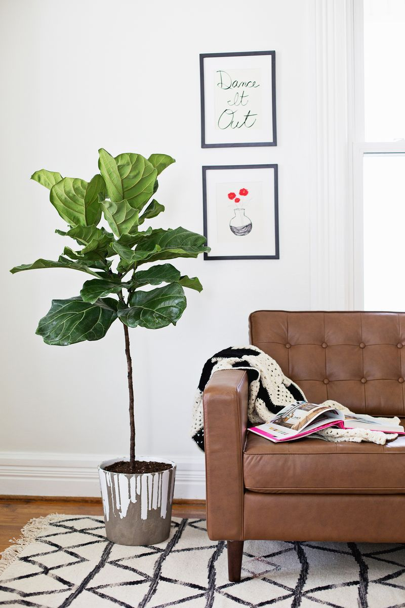 A living room with a concrete planter with a tree in it