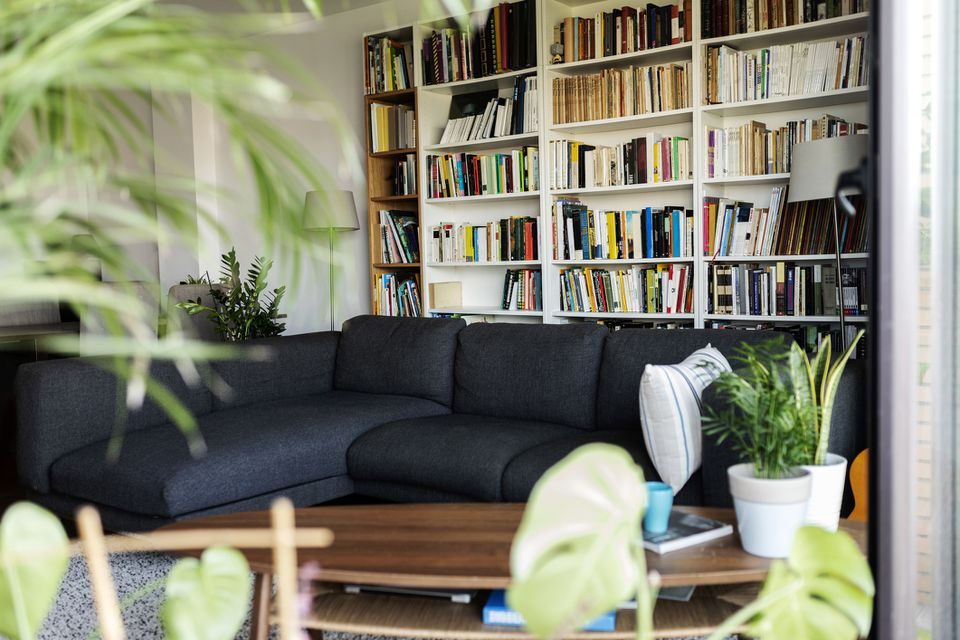 a chic living room with a black sofa, plants, and bookshelves with tons of books