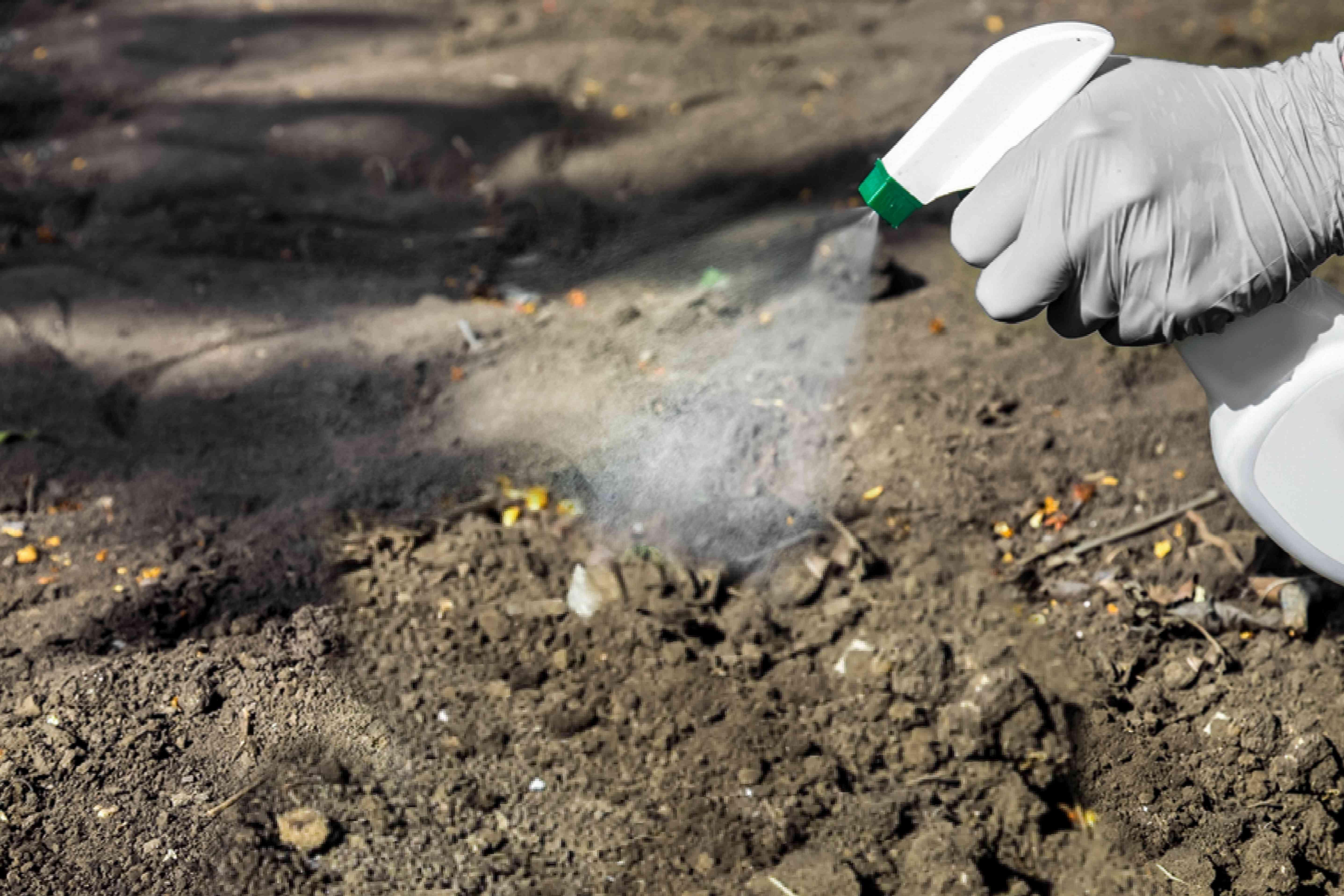 using pesticide outdoors