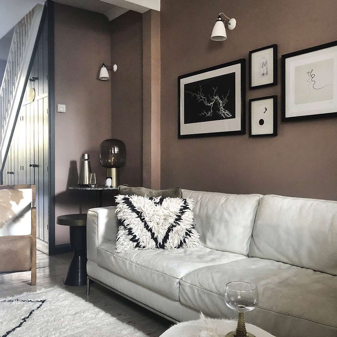 Living room with brown paint and white couch