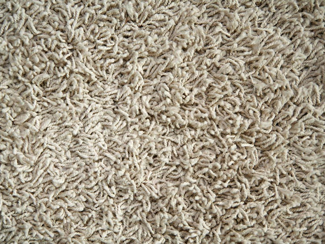 Nylon vs. Triexta Carpet Fibers