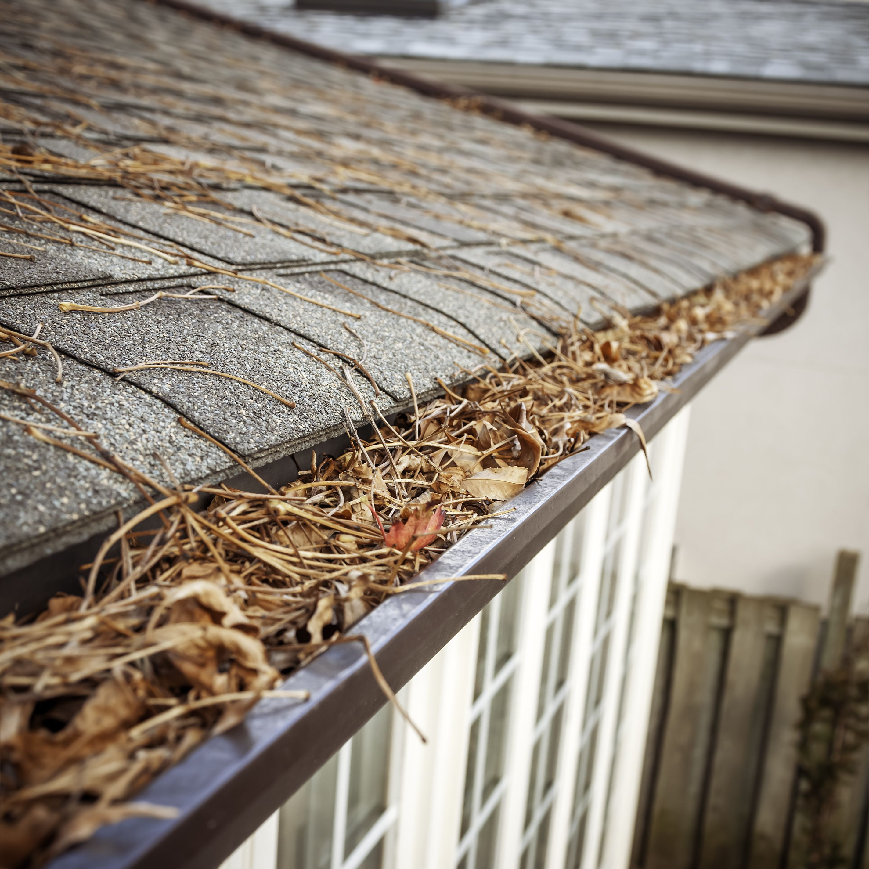 Spring Cleaning Home Gutters