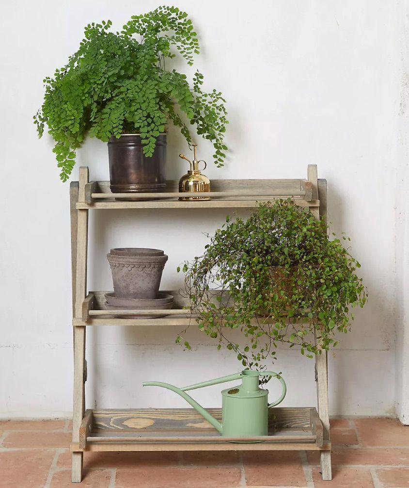 Anthropologie Spruce 3-Shelf Plant Stand