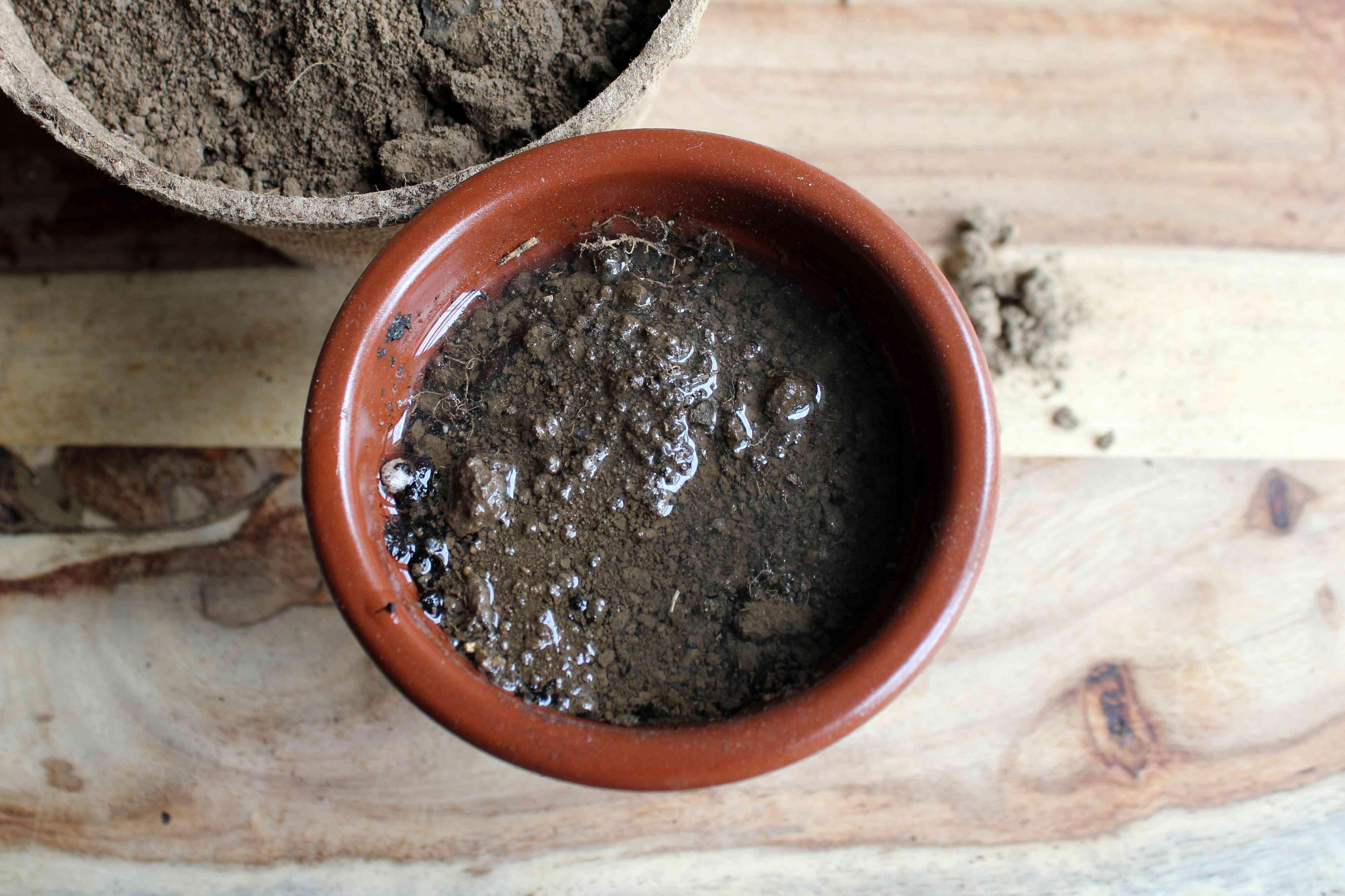 slow-draining clay soil