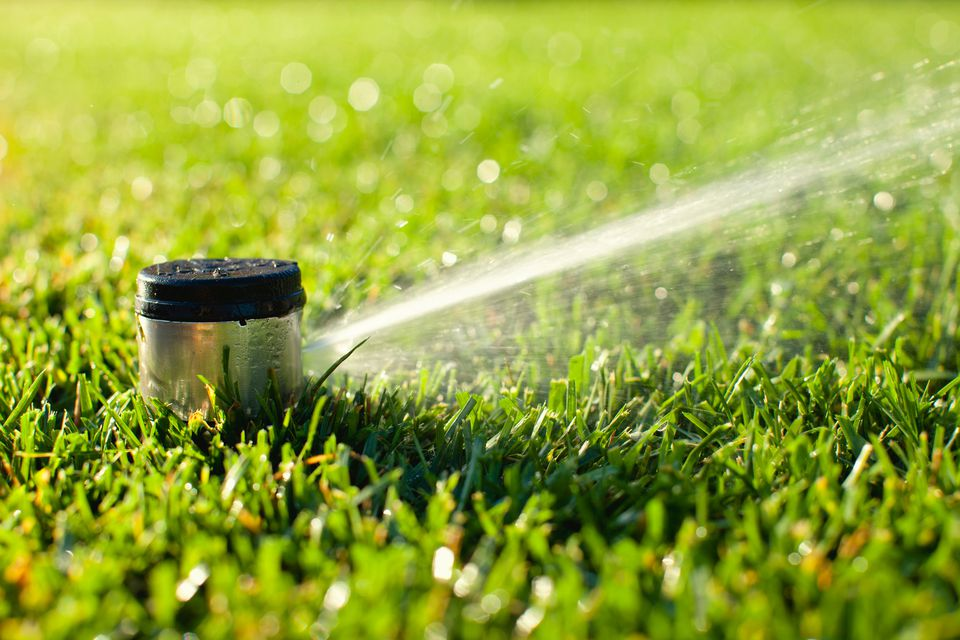 Yard sprinkler