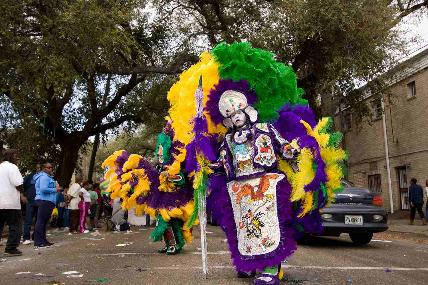 How To Throw A Mardi Gras Party