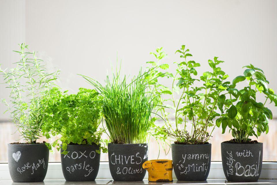 DIY Outdoor decor - herb garden