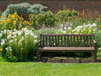 Wooden bench surrounded by flowering garden